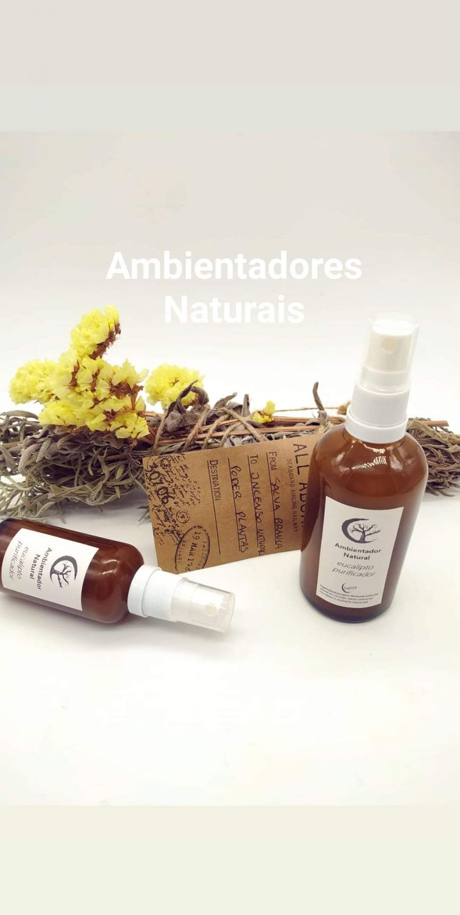 Workshop Incensos e Ambientadores Naturais