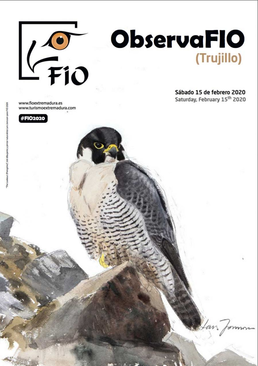 ObservaFIO (Trujillo) 2020