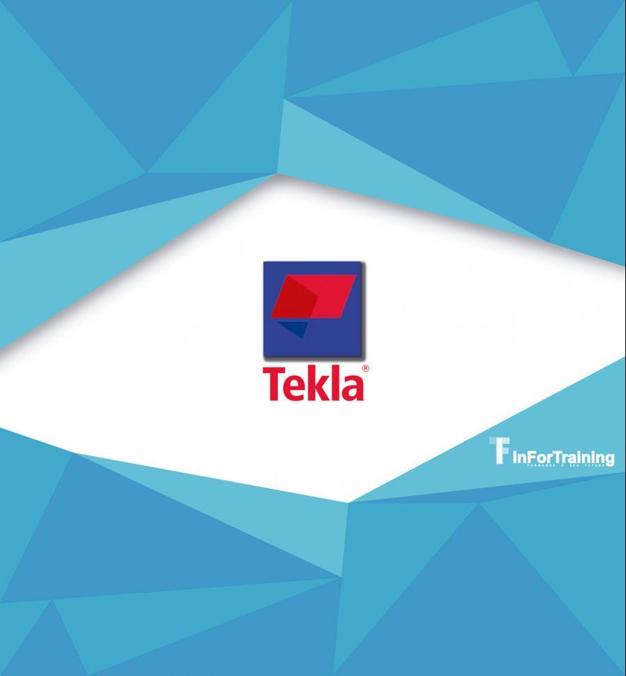 Curso Medida TEKLA STRUCTURES STEEL DETAILING