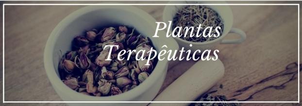Plantas Terapêuticas nas Patologias Comuns