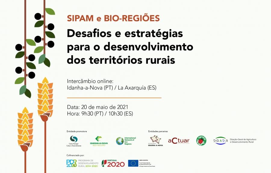 Desafios e estratégias para o desenvolvimento dos territórios rurais