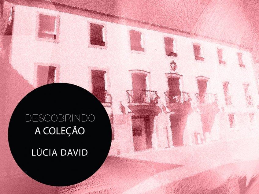 Descobrindo a coleção - Lúcia David