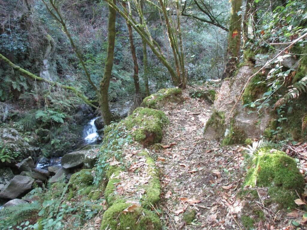 Caminhando do Rio Vouga à Serra do Caramulo