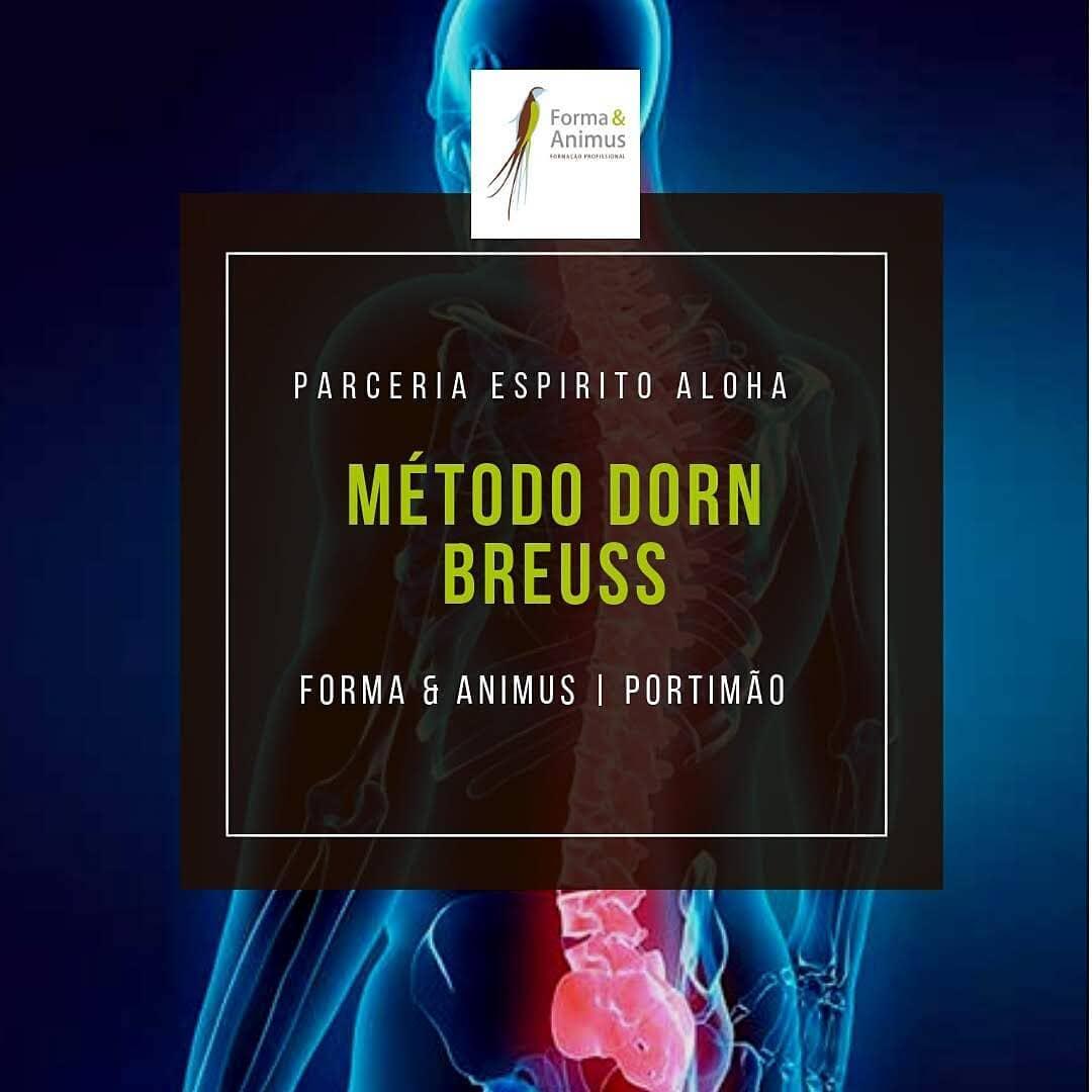 Curso Massagem Método Dorn-Breuss - Portimão