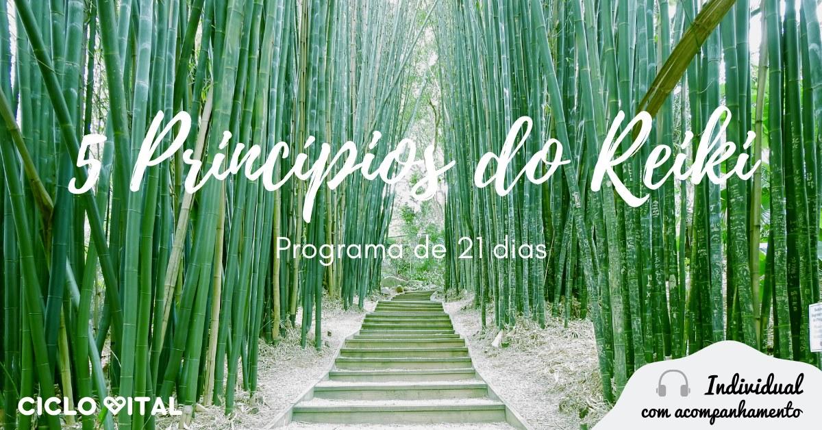 5 Princípios do Reiki - Programa de 21 dias