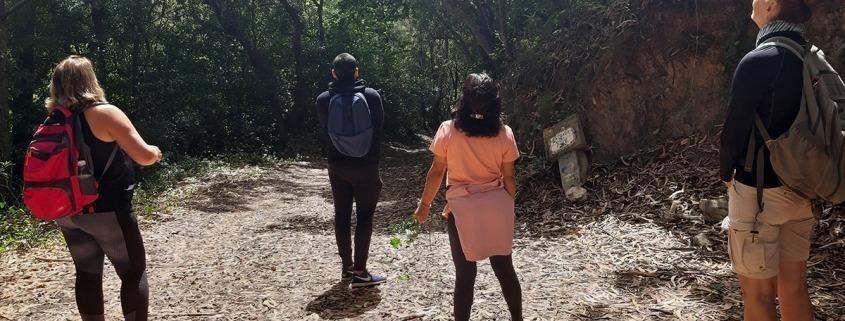 Caminhada de Reconexão em Silêncio – Penedo e Serra | Sintra