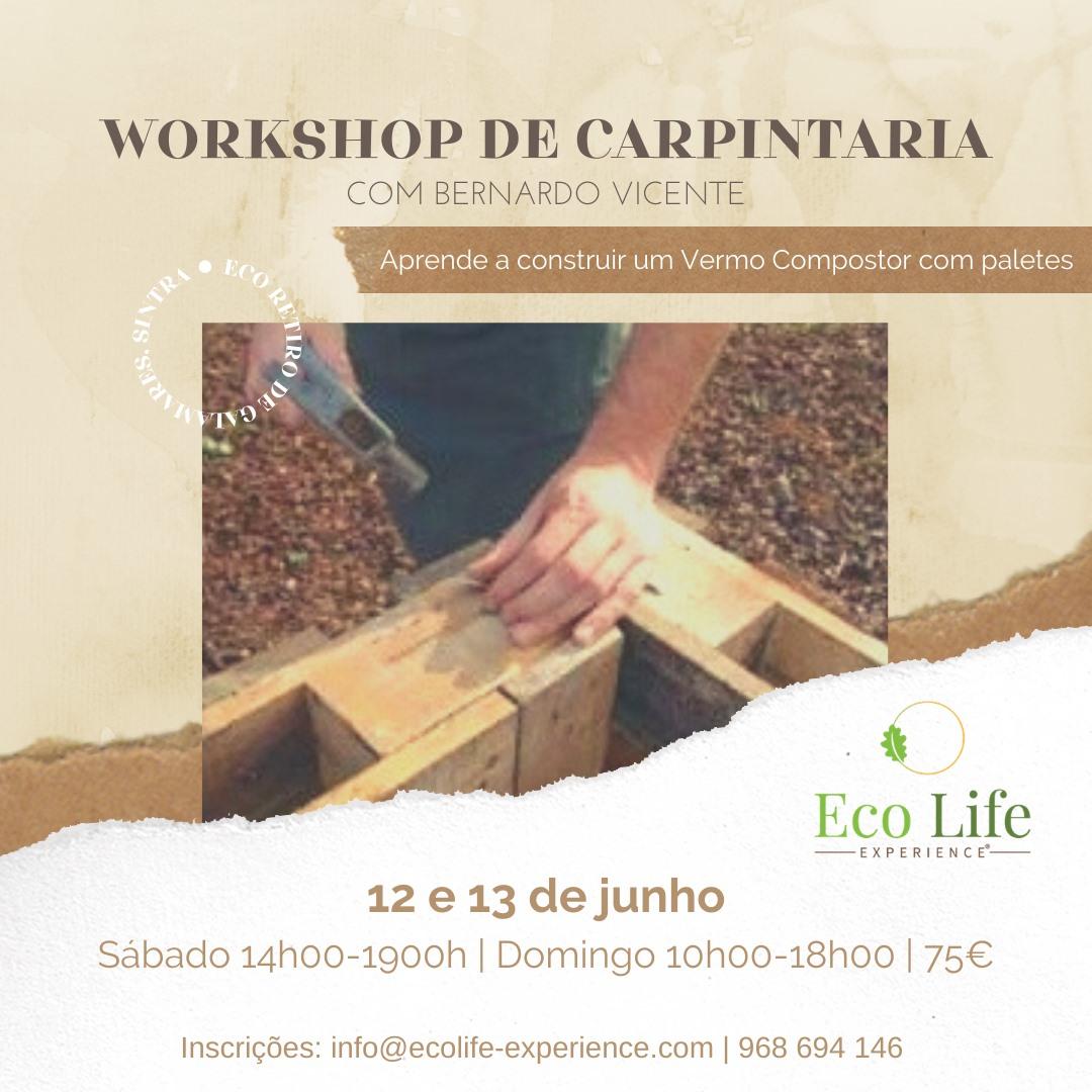 Workshop Carpintaria com Bernardo Vicente – Construir  uma Vermo compostor