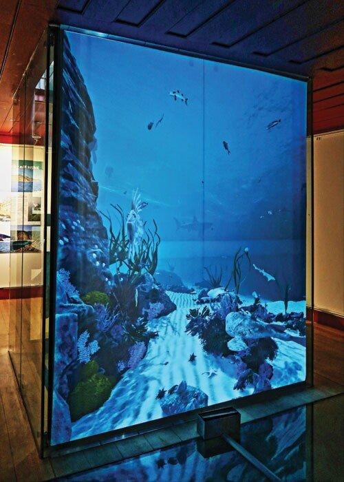 Visitas Digitais ao Museu Marítimo de Sesimbra