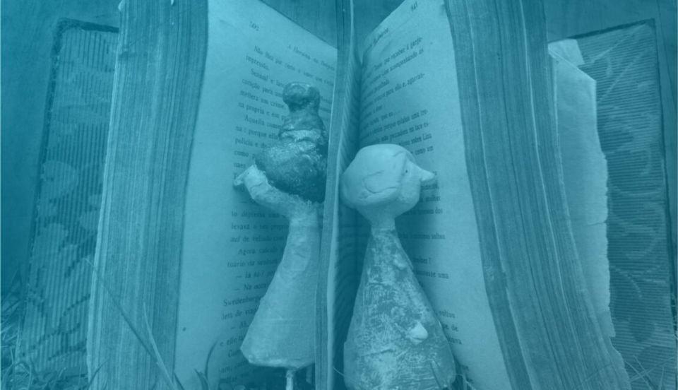 Janelas de Leitura