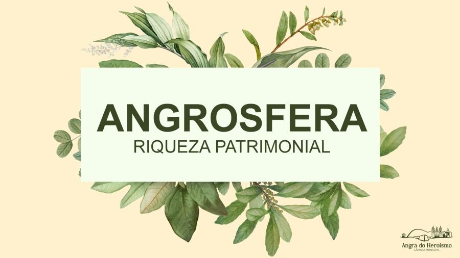 """Apresentação do Portal """"Angrosfera – Riqueza Patrimonial"""""""