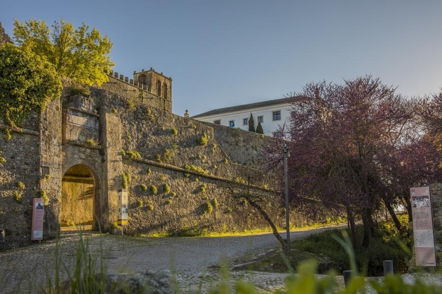 Visitas guiadas ao Castelo e Centro Histórico no verão