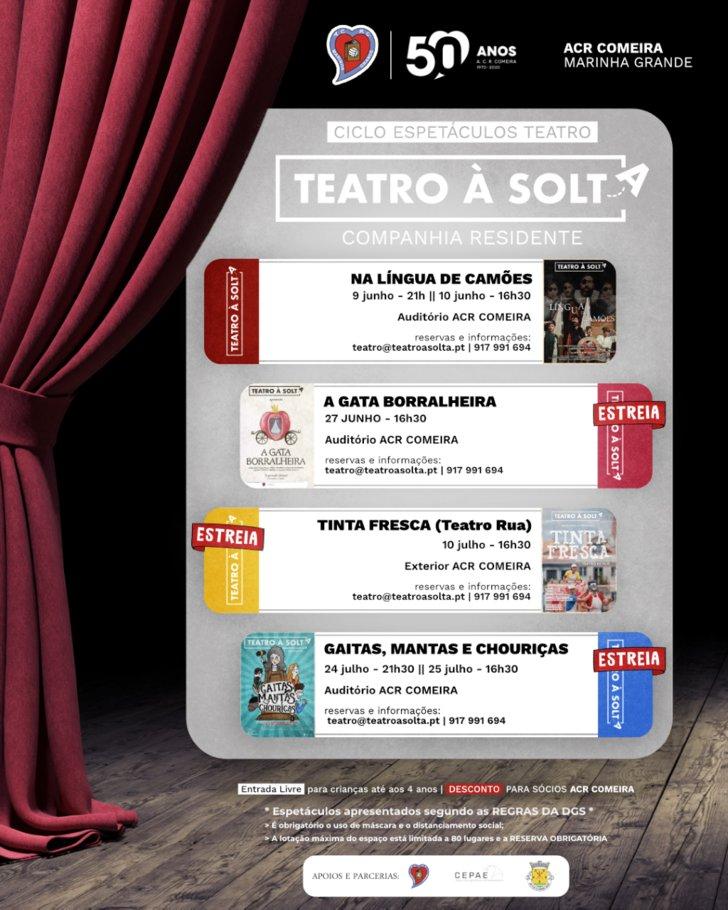 Ciclo de Teatro - A Gata Borralheira (Teatro para a Infância)