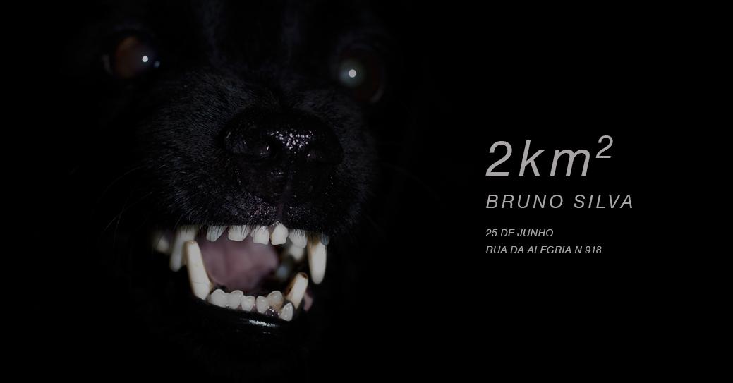 '2 km²' de Bruno Silva
