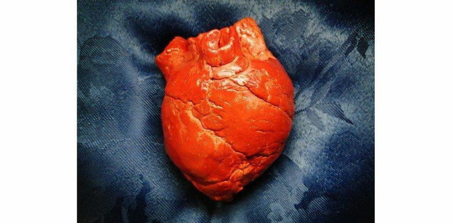 Exposição 'My Heart and Soul' de Sofia Monteiro