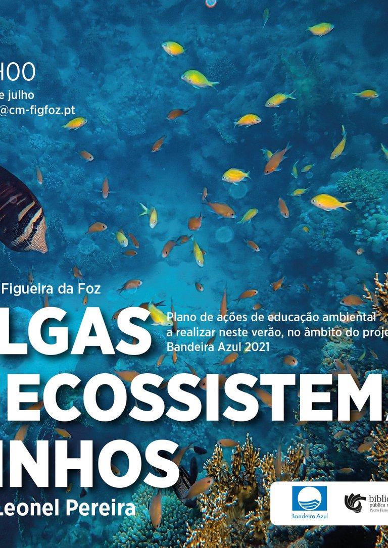 """Workshop """"As algas e os ecossistemas marinhos"""""""