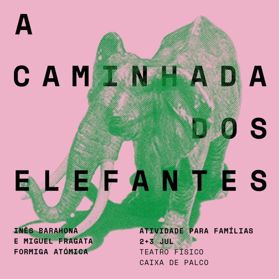 A CAMINHADA DOS ELEFANTES