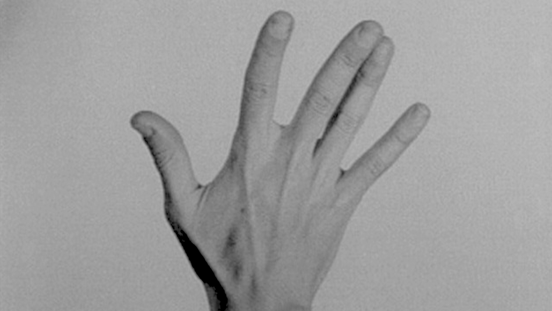 TO FILM WITH ONE HAND MY OTHER HAND - ciclo de cinema #2 ⟡ ZDB