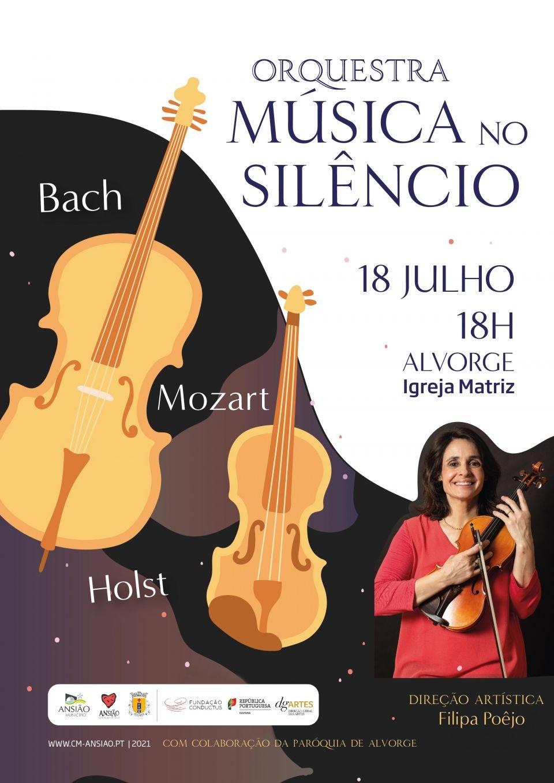 Orquestra Música no Silêncio