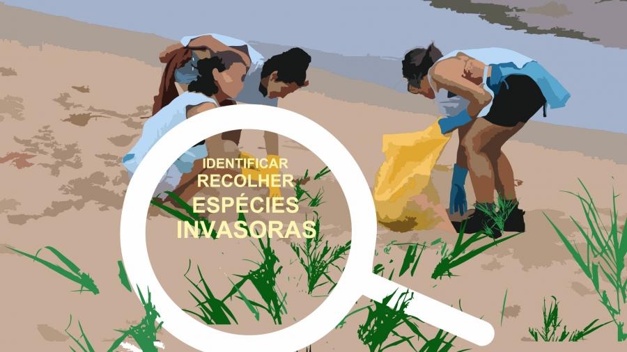 Gincana Inclusiva – Praia de Amieira