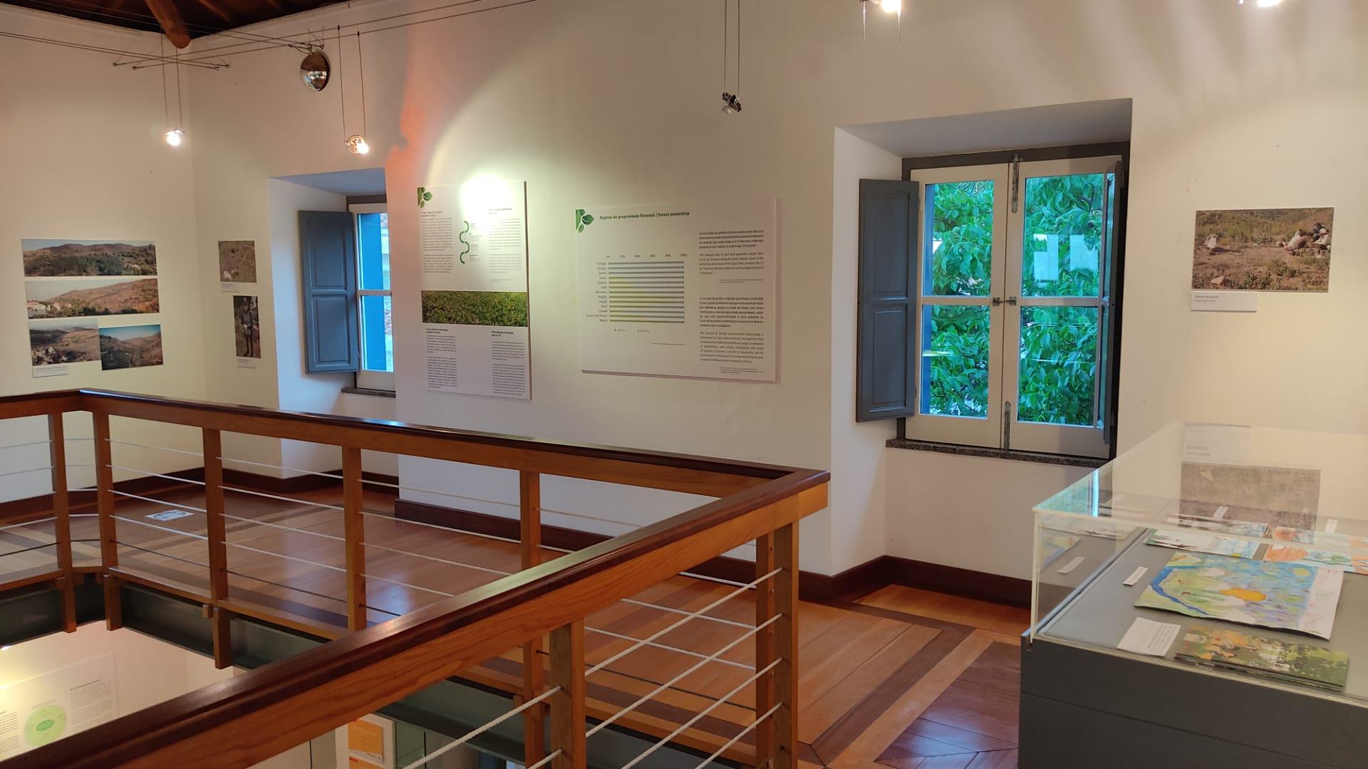 Renature Monchique, restauro ecológico na Serra de Monchique