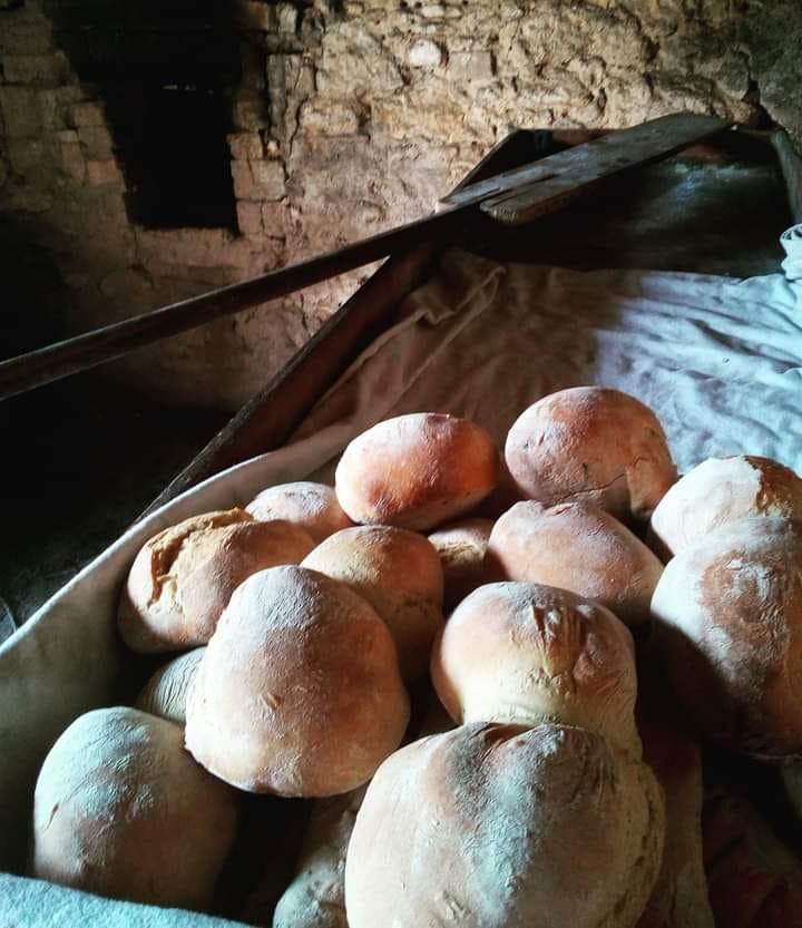 Workshop Pão tradicional de Palmela