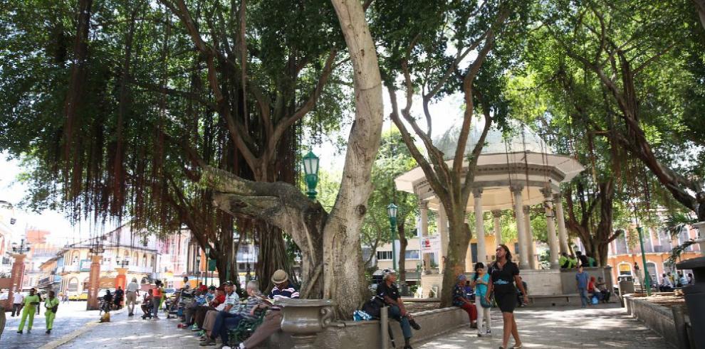 Charla 'Árboles Urbanos: Proyectos con enfoque en servicios ecosistémicos'