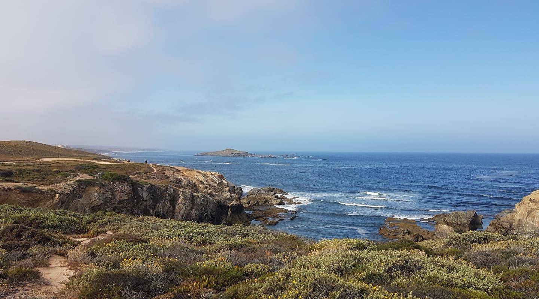 Percurso do Sissal+passeio de barco à Ilha do Pessegueiro/visita guiada