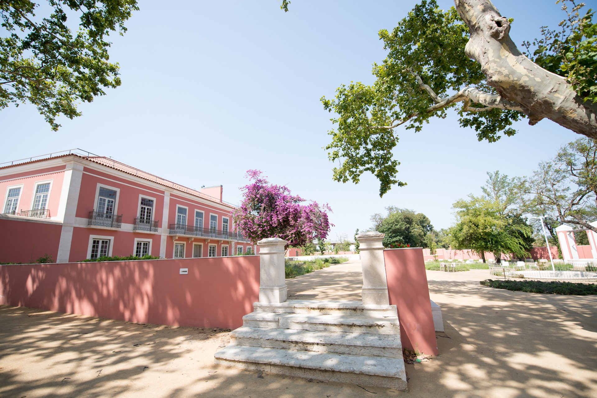 A Santa Casa Abre Portas | Quinta Alegre