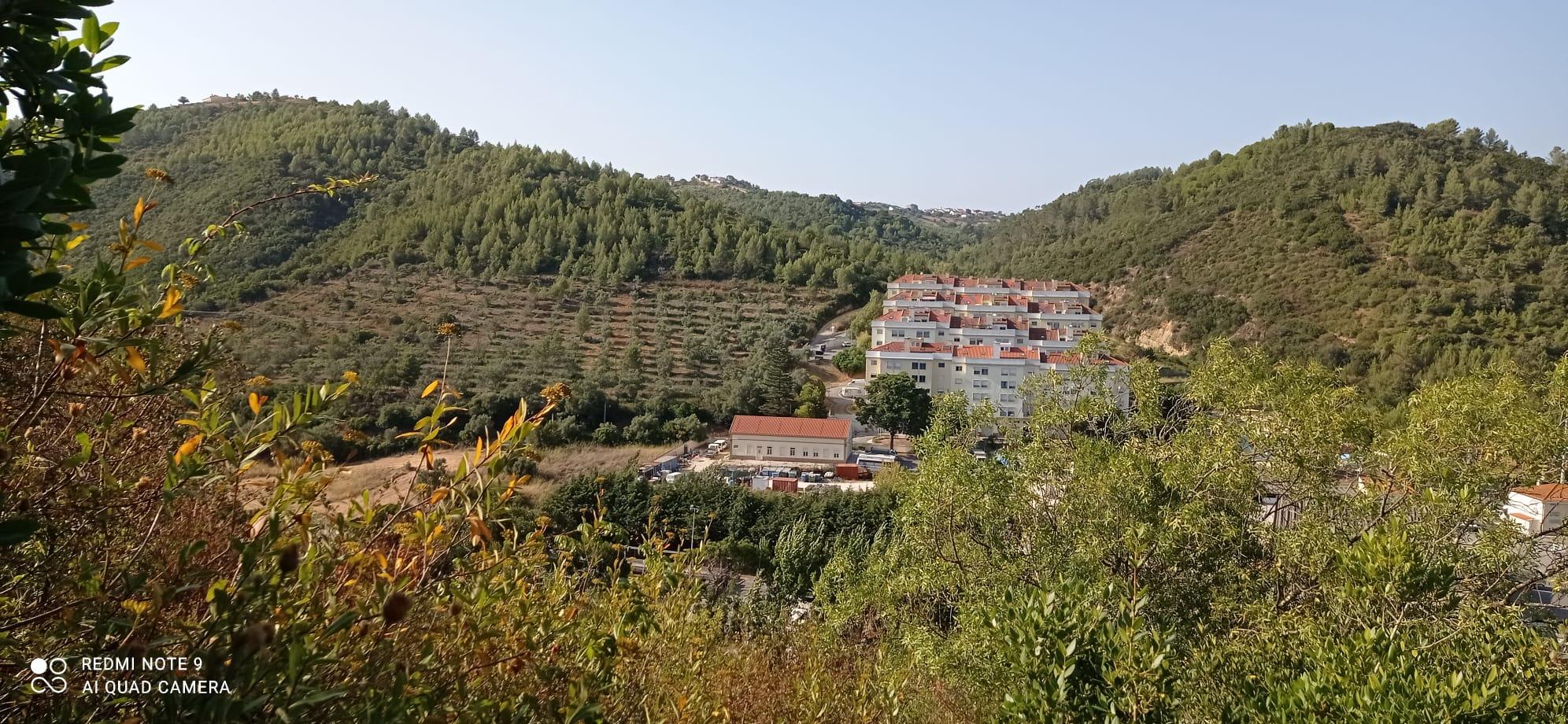 Caminhada, Yoga, Jogos de floresta & Piquenique