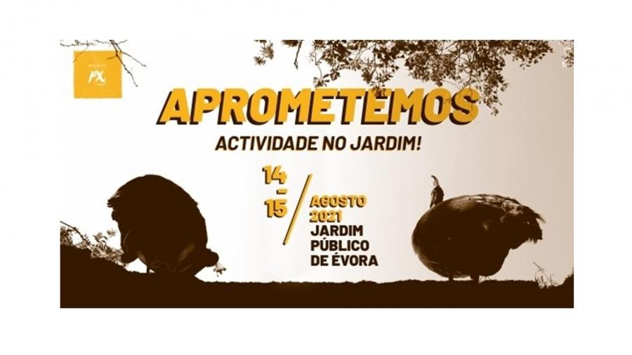 Aprometemos | Atividade no Jardim | PéDeXumbo