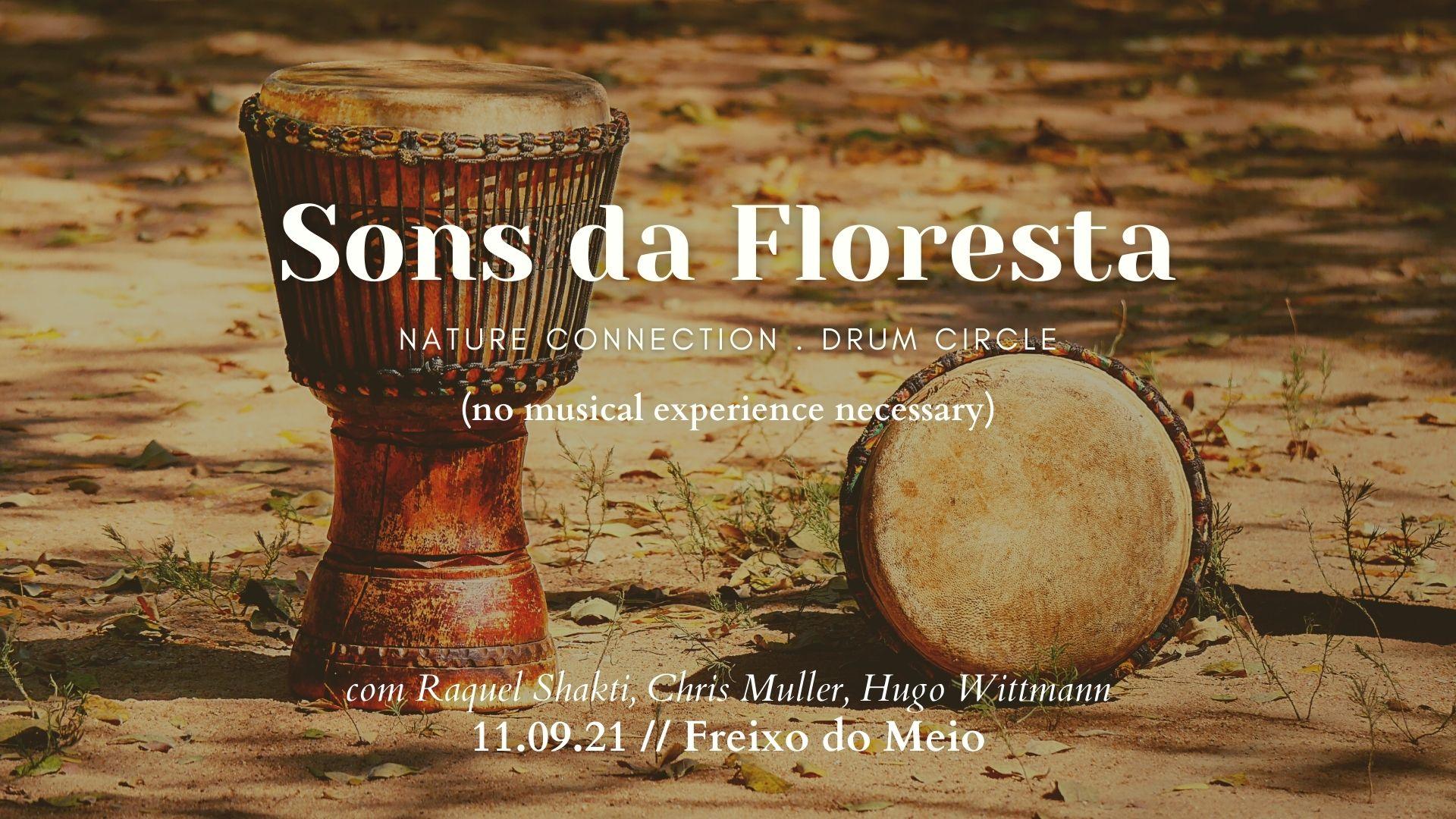 Sons da Floresta - Freixo do Meio
