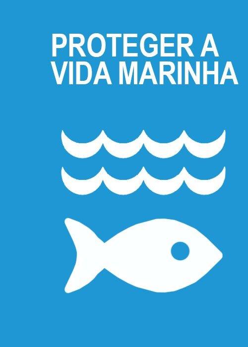 Conhecer, Aprender, Viver de Modo Sustentável - A Beleza do Mar