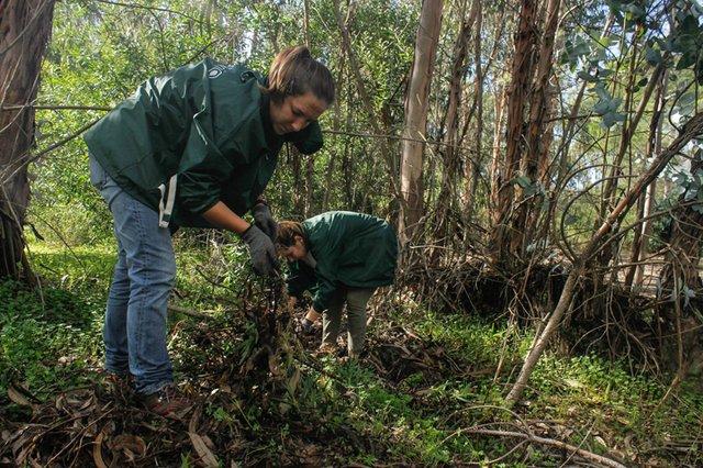 Voluntariado Ambiental I na Fábrica de Pólvora de Vale de Milhaços