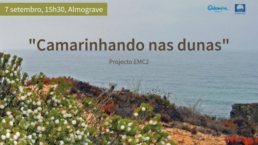 Ação de sensibilização ambiental 'Camarinhando ...
