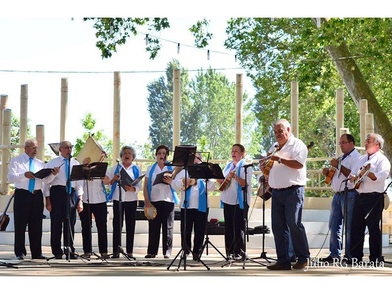 Música: Grupo de Cavaquinhos de Formação Ocupacional  de Seniores