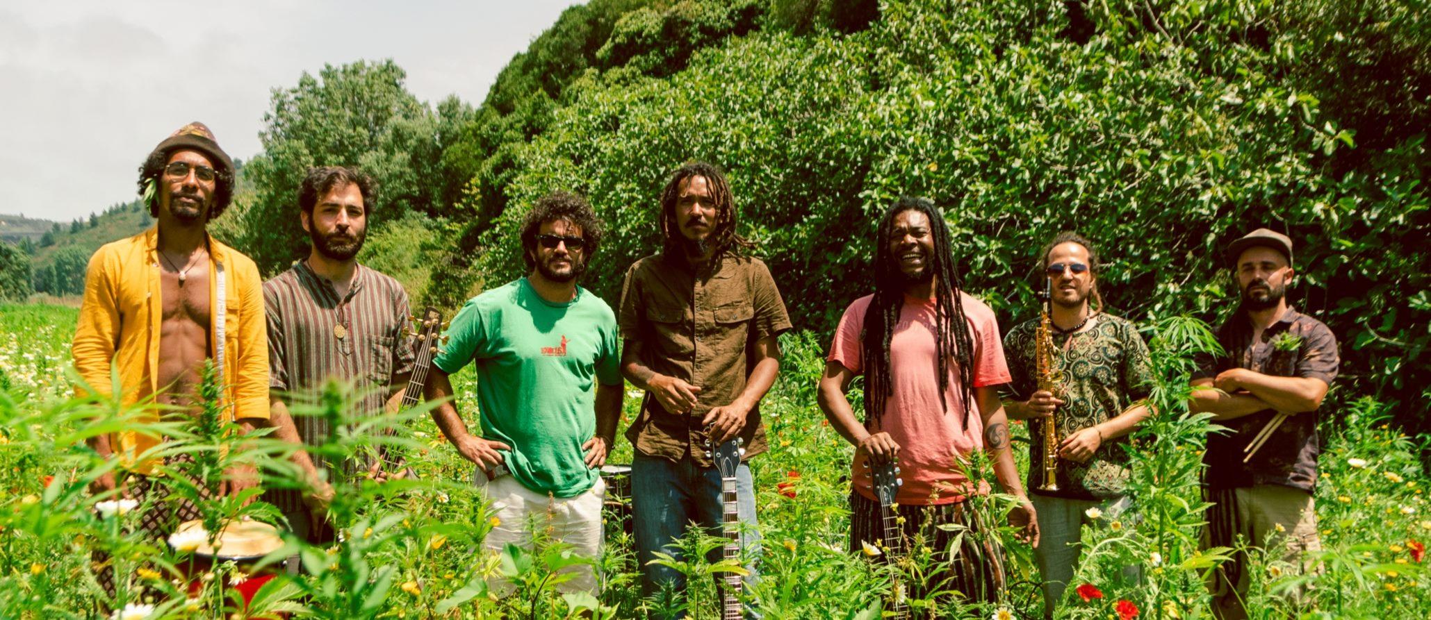 Plantada Reggae @querotenasdocas