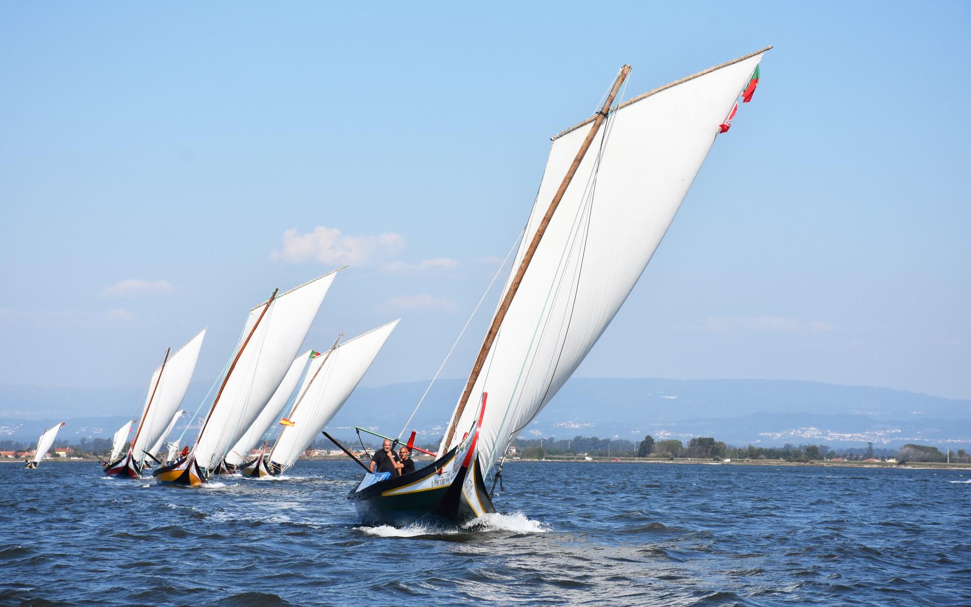 Regata de Barcos Moliceiros - Romaria de São Paio