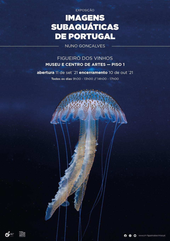 Exposição de Fotografia Subaquática de Nuno Gonçalves
