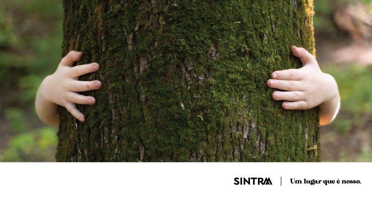 Sintra assinala Ecology Day