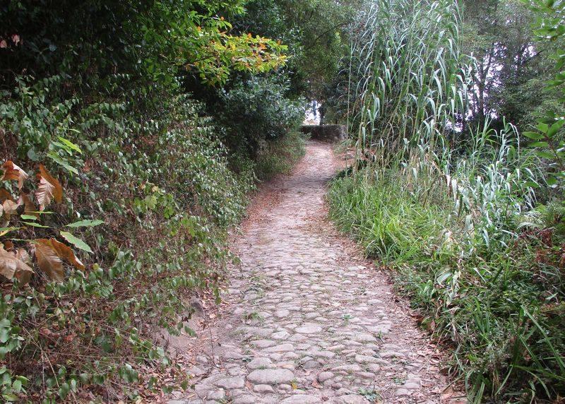 Caminhando na Serra de Sintra: Penedos e Miradouros