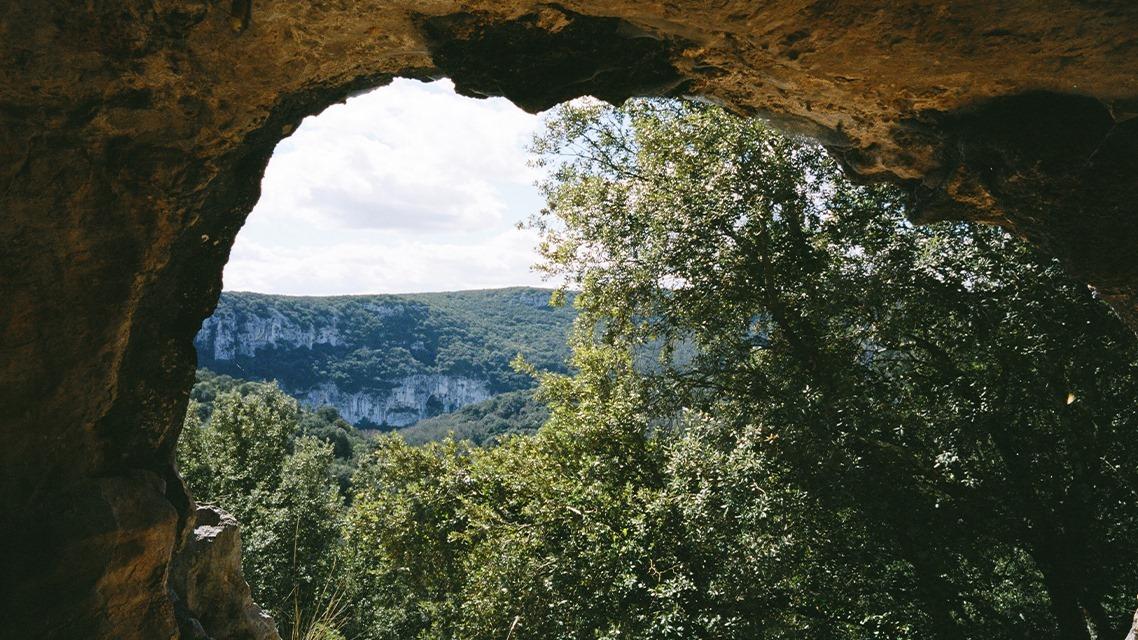 ciclo de cinema encontros da imagem: a gruta dos sonhos perdidos, de werner herzog