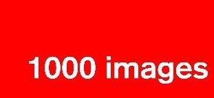 1000 Imagens: Uma Palavra Vale Mais que Mil Imagens