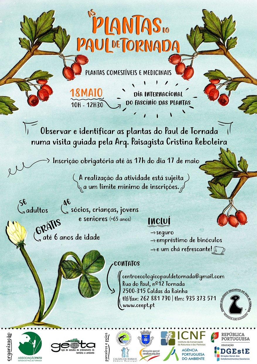 As Plantas do Paul de Tornada - Plantas comestíveis e medicinais - 3ª edição