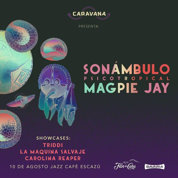 Caravana Presenta: Sonámbulo [] Magpie Jay