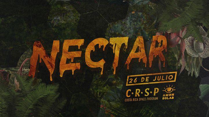 Nectar - Viernes 26 de Julio - Amón Solar