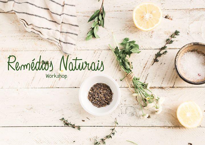 Remédios Naturais | Workshop
