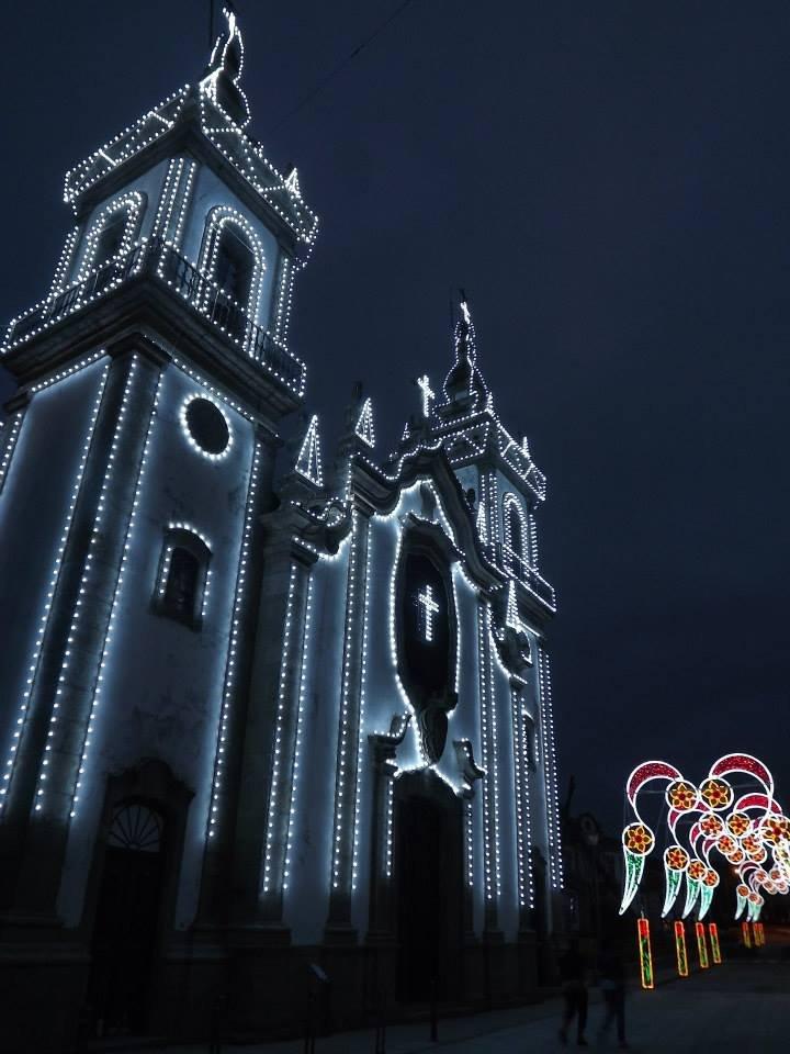 Festas Concelhias em Honra de S. ...