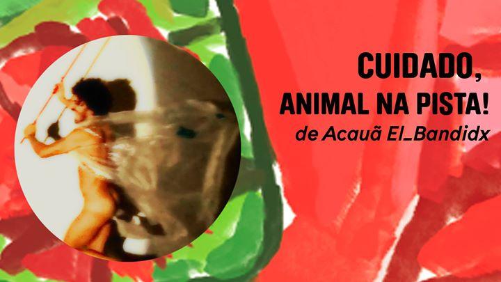 Cuidado, animal na pista!   por Acauã El_Bandidx