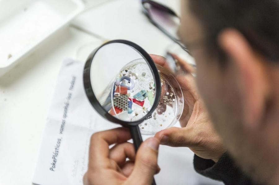 Oceanário leva Plasticologia à Avenida da Liberdade