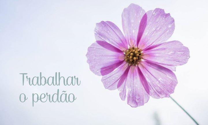 O Perdão | Meditação